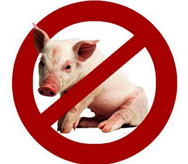 Почему мусульмане не едят свинину видео