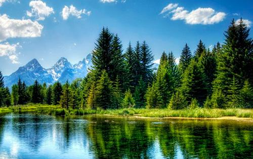 Природа не только красивый фон   islam.ru: http://www.islam.ru/content/obshestvo/priroda-ne-tolko-krasivyj-fon